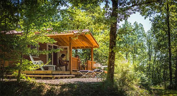 Nature et repos chalet dans les bois