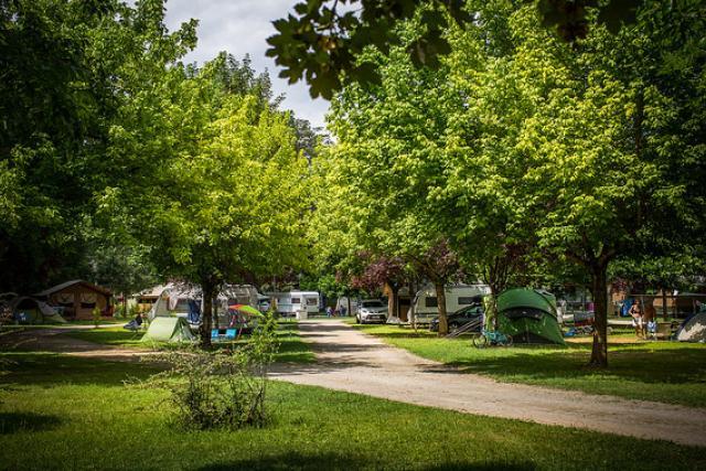 Soleil des Bastides allée camping ombragée