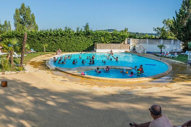 Chêne vert piscine