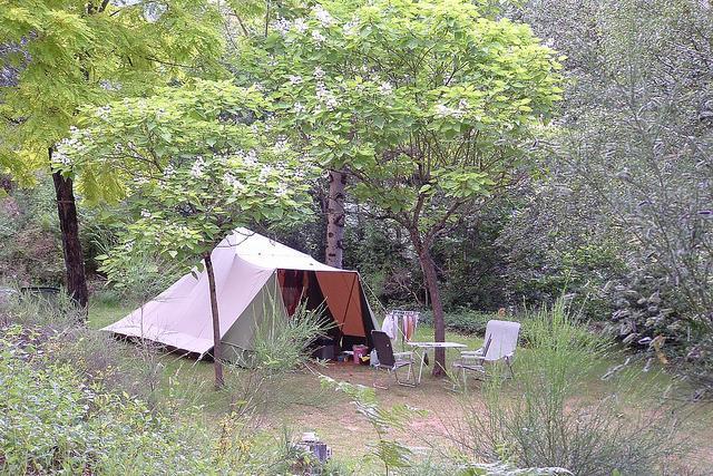 Campings Tarn Sud Ouest  Midi Pyrénées