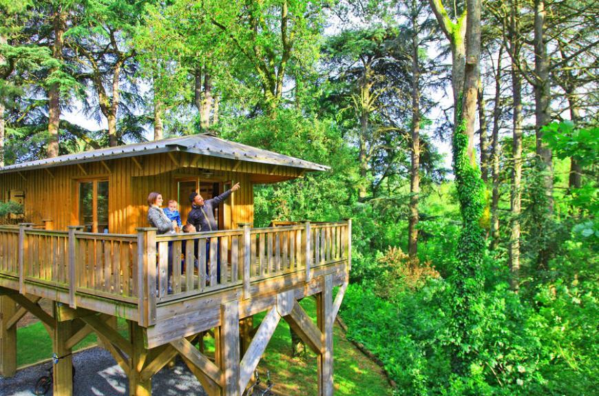 Albirondack Camping Tarn Cabanne perchée