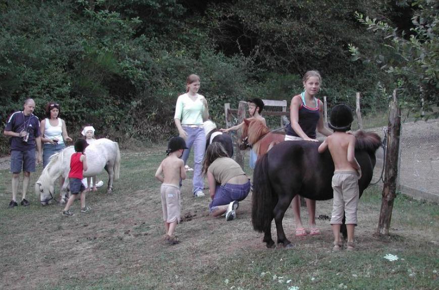 La Bastide d'Albignac ânes & enfants