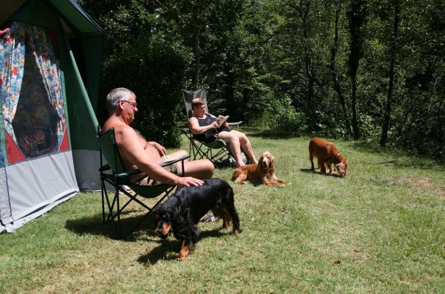 Municipal La Bâtisse caravane et chiens