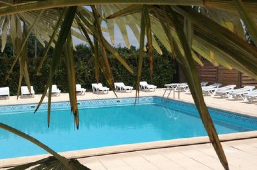 Pessac piscine & palmier