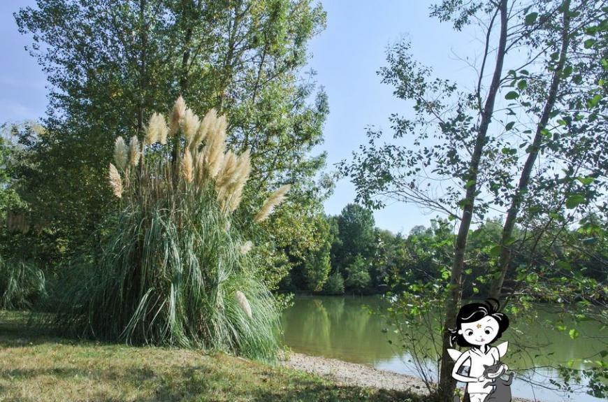 Les Fées du Moulin Lisle Lac
