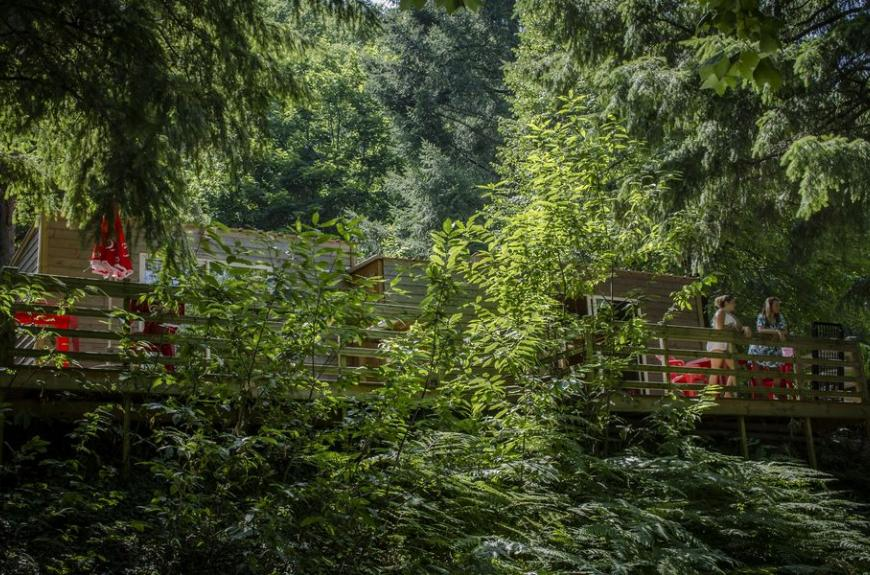 Camping Lestap foret