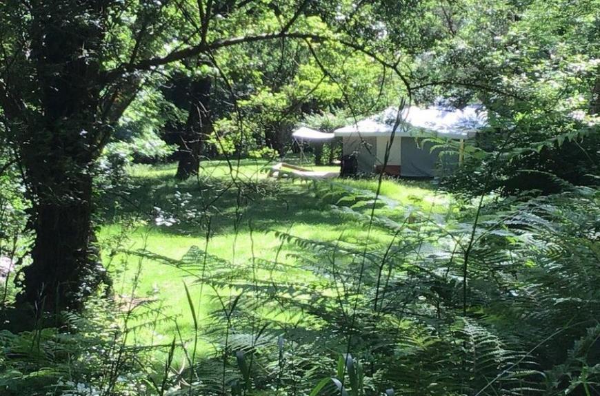 Camping Domaine Les Clots emplacement en forêt