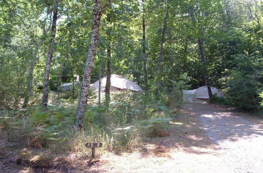 Camping Domaine Les Clots emplacements forêt
