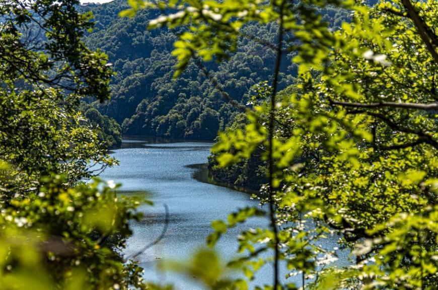 Camping les Tarrasses du Viaur riviere et foret